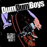 Dumdum Boys Flesh ! Trash ! Heat !