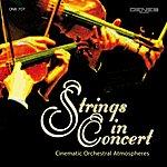 Franco Tamponi Strings In Concert
