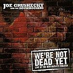 Joe Grushecky & The Houserockers We're Not Dead Yet: Live At The New Hazlett Theater