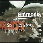Ammonia In A Box