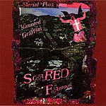 Ariel Pink's Haunted Graffiti Scared Famous