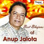 Anup Jalota Best Bhajans Of Anup Jalota