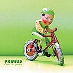 Primus Green Naugahyde