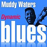 Muddy Waters Dynamic Blues - Muddy Waters : 50 Essential Tracks