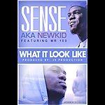 Sense What It Look Like (Feat. Mr 100)