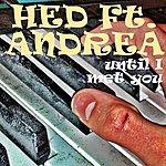Hed Until I Met You