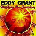 Eddy Grant Walking On Sunshine