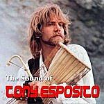Tony Esposito The Sound Of Tony Esposito
