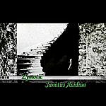 Zymotic Sanctus Acidum