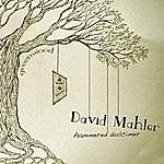 David Mahler Greenwood