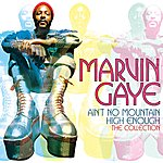 Marvin Gaye Ain't No Mountain High Enough: The Collection