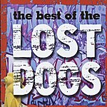 Lost Dogs The Best Of The Lost Dogs