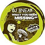DJ Sneak What You Been Missing