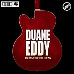 Duane Eddy Because They're Young