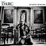 Daniel Darc La Taille De Mon Ame