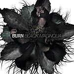 Burn Black Magnolia