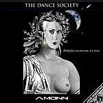 Amonn Angel (Feat. The Dance Society) (Tachyonic V2 Mix) - Single