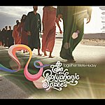 The Polyphonic Spree Together We're Heavy