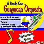 Guayacan Orquesta A Fondo Con...Guayacan Orquesta