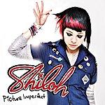 Shiloh Picture Imperfect