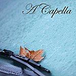 Capella A Capella