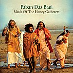 Paban Das Baul Music Of The Honey Gatherers