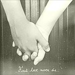 Soko First Love Never Die