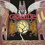 Cyanide Cyanide