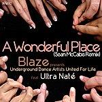 Ultra Naté A Wonderful Place (Sean Mccabe Remix)