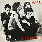 Mars Furious Pig