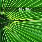 Reunited Rapture