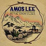 Amos Lee As The Crow Flies