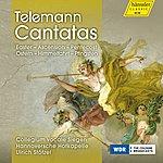 Ulrich Stotzel Telemann: Cantatas