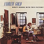 Andrew Gold What's Wrong With This Picture? (Deluxe Edition)