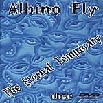 Albino Fly The Eternal Temporary 2.0
