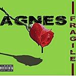 Agnes Fragile