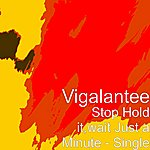Vigalantee Stop Hold It,Wait Just A Minute - Single
