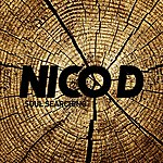Nico D Soul Searching