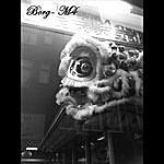 Borg M4