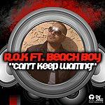 Ro-K Can't Keep Waiting (Feat. Beach Boy) - Single