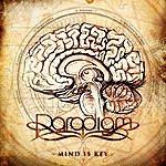 Paradigm Mind Is Key