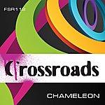 Chameleon Crossroads