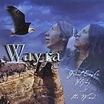 Wayra Great Eagle Flying With The Wind