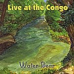 Water Bear Live At The Congo