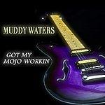 Muddy Waters Got My Mojo Workin