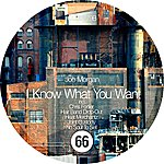 Joe Morgan I Know What You Want - Single