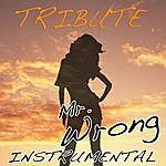 The Singles Mr. Wrong (Mary J. Blige Feat. Drake Instrumental Tribute)