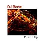 DJ Boom Pump It Up - Single