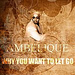 Ambelique Why You Want To Let Go