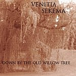 Venitia Sekema Down By The Old Willow Tree